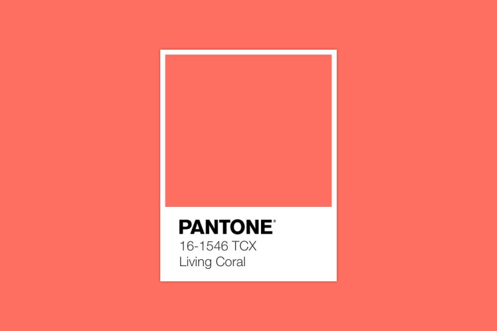 2019 Color of the Year: Fabric Inspiration